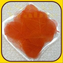 Skeletové listy Oranžová