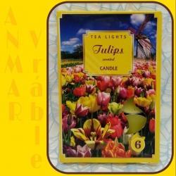Čajová sviečka 80g Tulipány