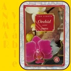 Čajová sviečka 80g Orchidea