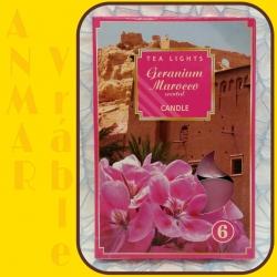 Čajová sviečka 6ks Pelargónie Maroko