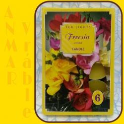 Čajová sviečka 6ks Frézia