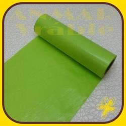 Papier 19m Zelená